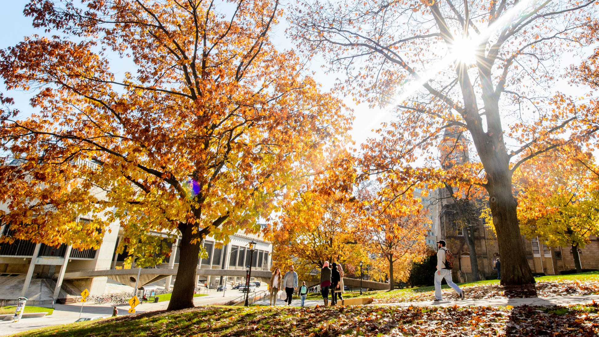 View of Bascom Hill in fall